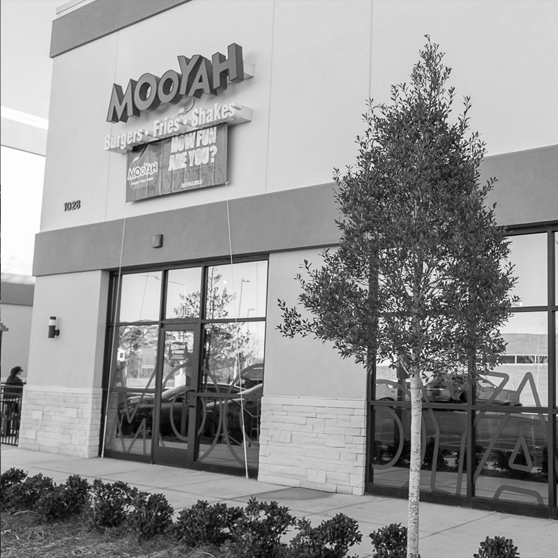 Mooyah Burgers, Fries and Shakes: Hoover